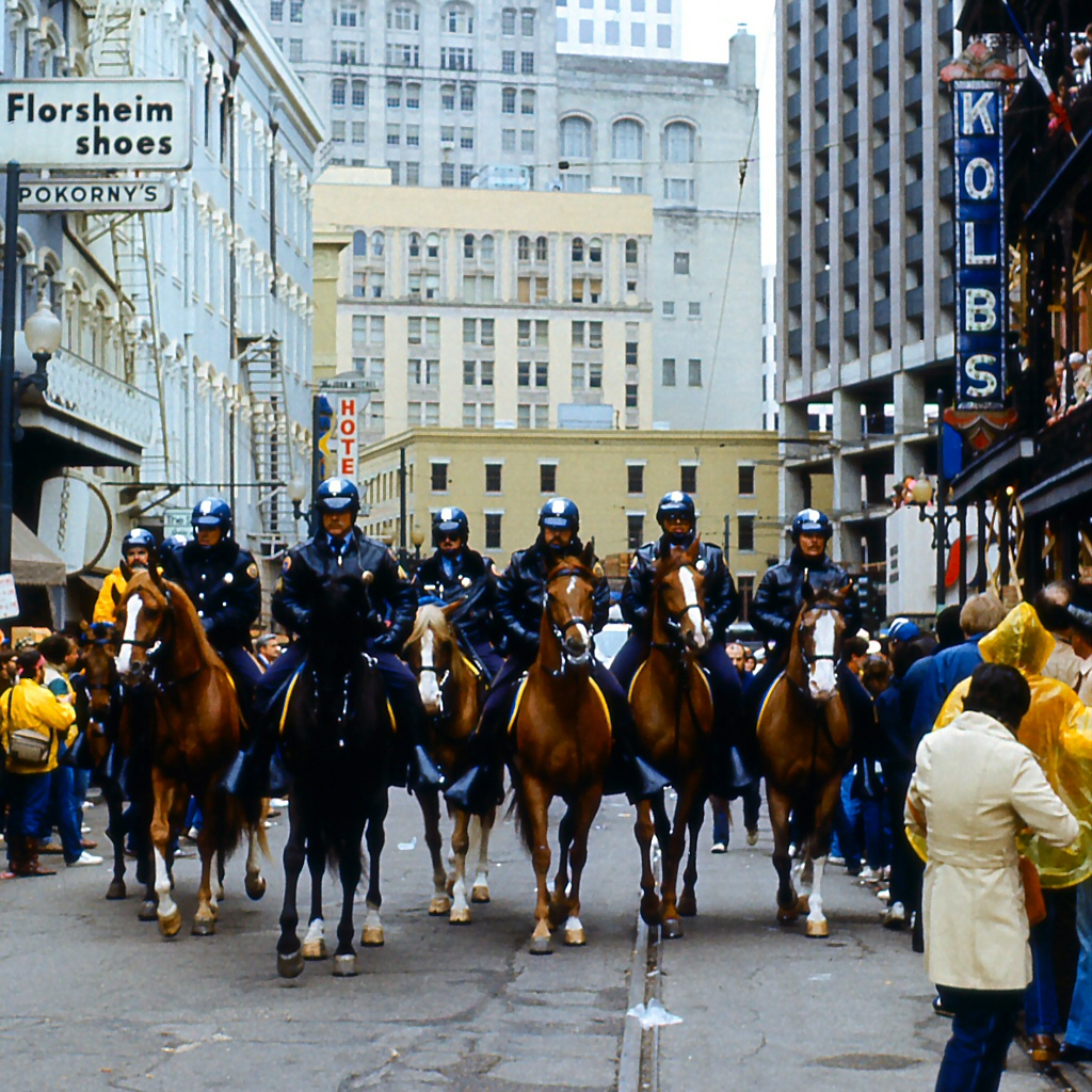 New_Orleans_Mardi_Gras_1984_Mounted_Police_on_St._Charles